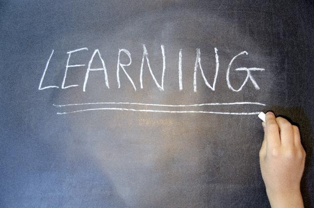 広く深い知識が必要? 不動産業界で活躍するために注目すべき資格はこれ